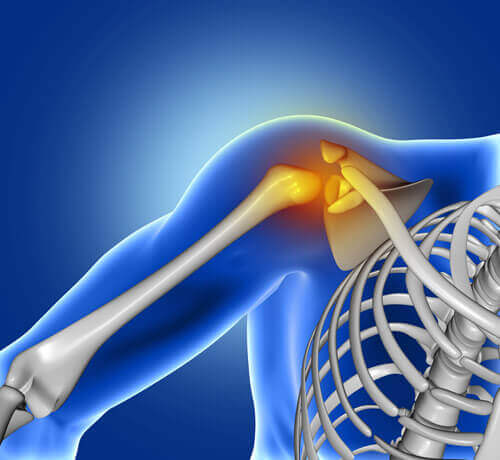 Joint Replacement Surgery and Knee Replacement Surgeon in